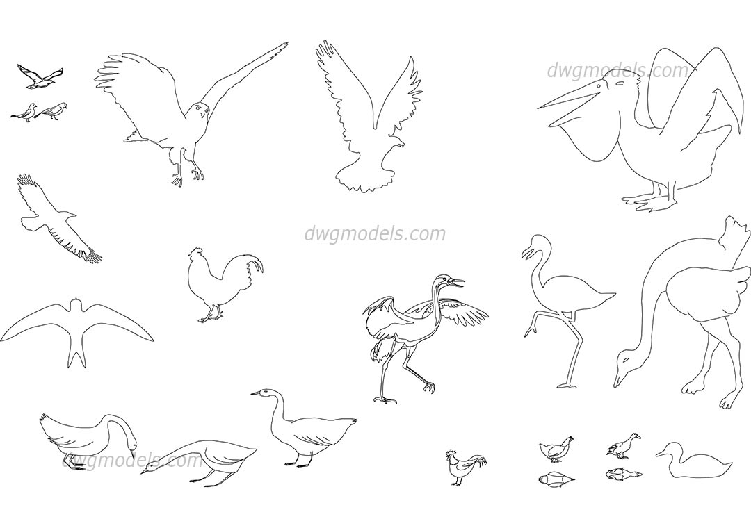 birds dwg  free cad blocks download
