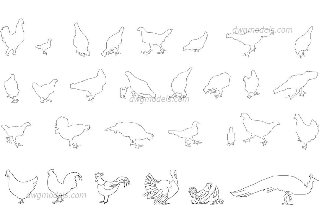 Birds Set Dwg Free Cad Blocks Download