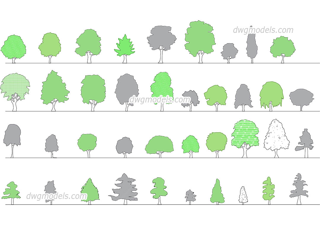 Plan And Elevation Of Trees : Trees elevation dwg free cad blocks download