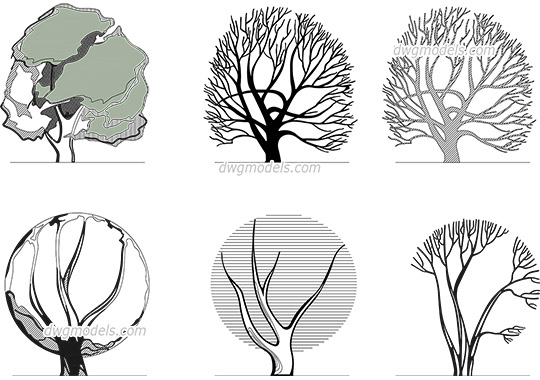 Architectural graphic Trees AutoCAD blocks