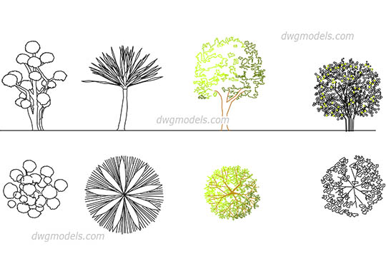 Ornamental trees - DWG, CAD Block, drawing