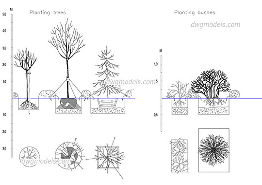 Planting Trees and Bushes free dwg model