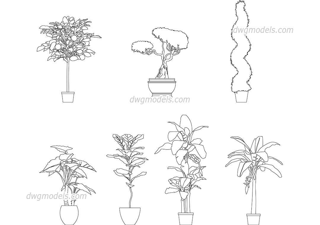 Potted Trees dwg, CAD Blocks, free download.