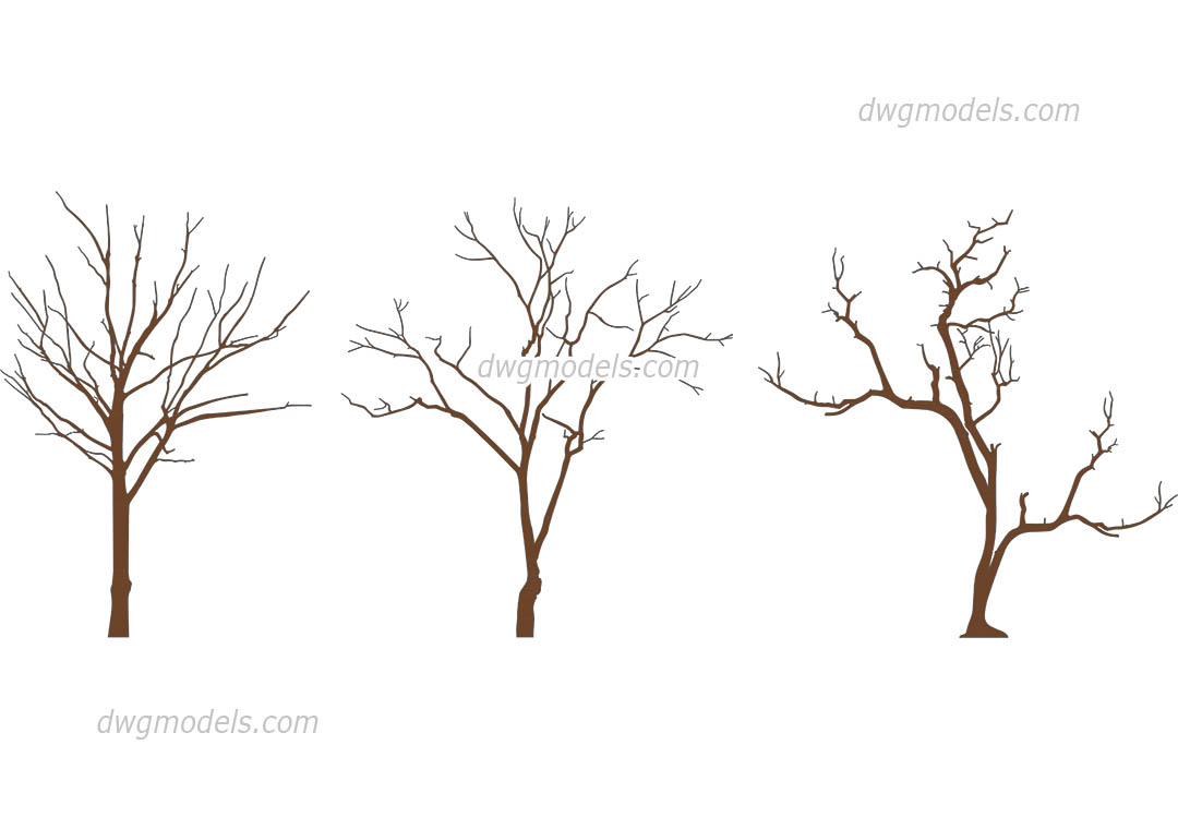 Winter Trees dwg, CAD Blocks, free download.