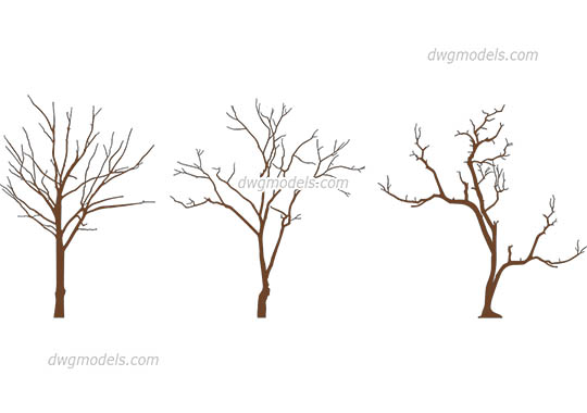 Winter Trees free dwg model