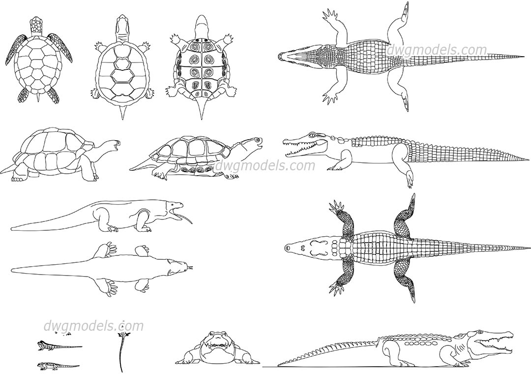 Reptiles dwg, CAD Blocks, free download.