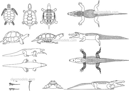 Reptiles dwg, cad file download free